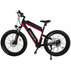 MOTAN M-B2 750W Dual Batteries Fat Electric Bike for Long Range + Fenders for Free Gift